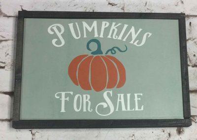 Pumpkins for sale framed